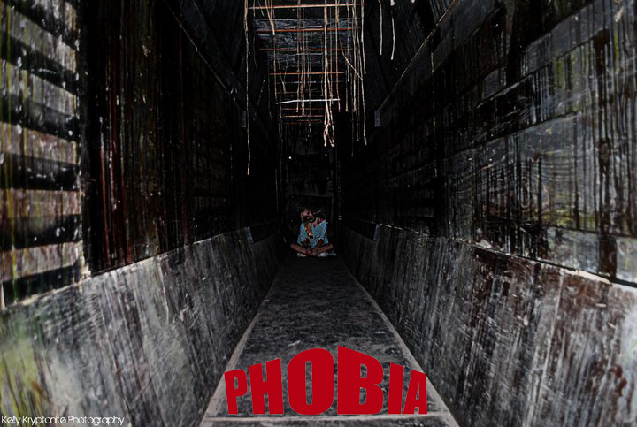 Image result for phobia houston